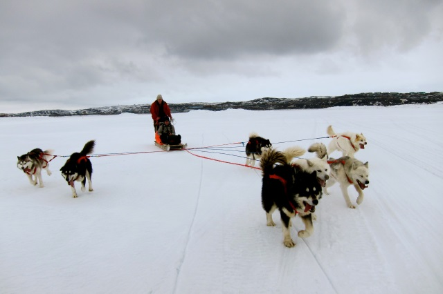 The right to food security in a changing Arctic