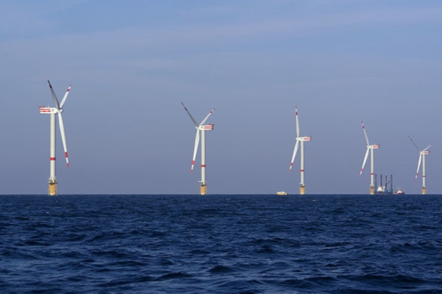 Carbon divestment is a shining example