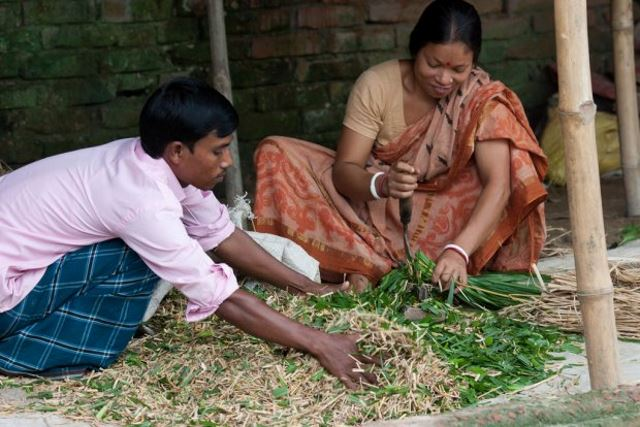 Closing the Gender Gap in Farming Under Climate Change