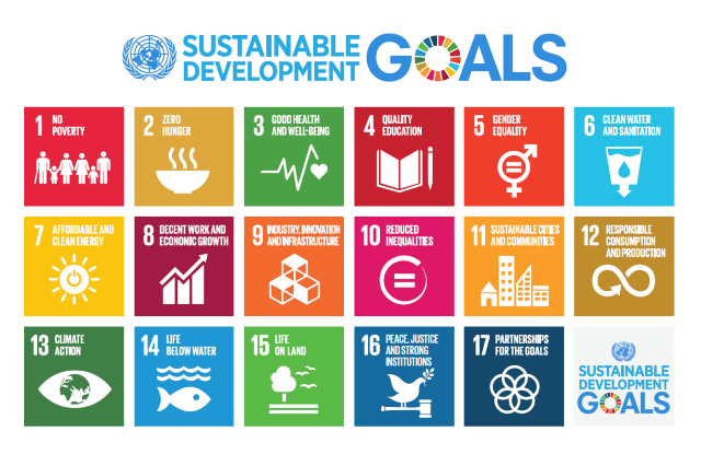 Statement from Mary Robinson on the Adoption of the Sustainable Development Goals